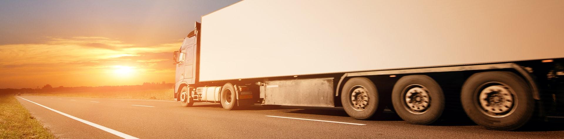 Monitorizare auto prin GPS pentru Transport Marfă & Internațional | evogps.ro